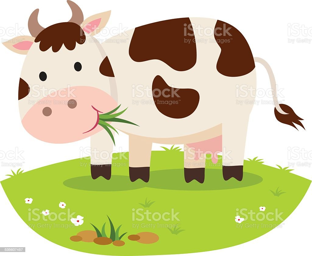 Cow eating grass. Cattle grazing. vector art illustration