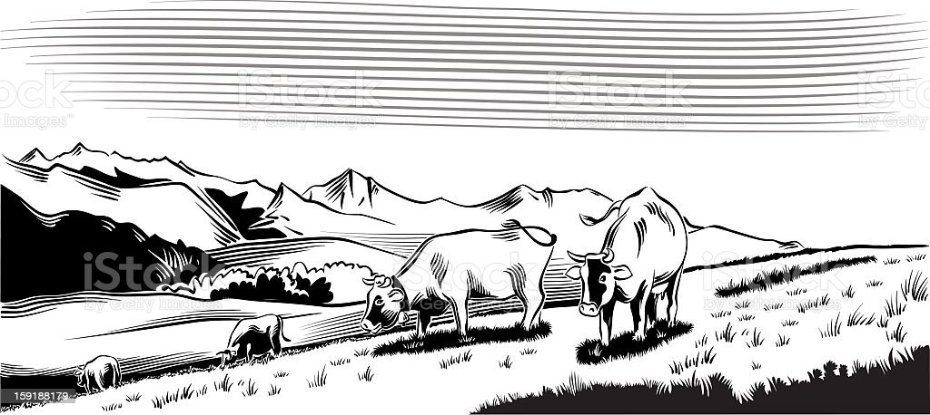 cow grazing in the mountains royalty-free stock vector art