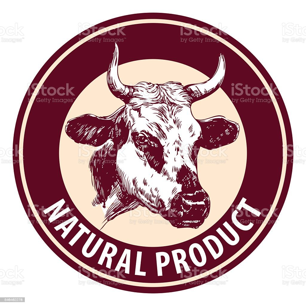 cow hand drawn vector llustration sketch. logo design template. farm vector art illustration