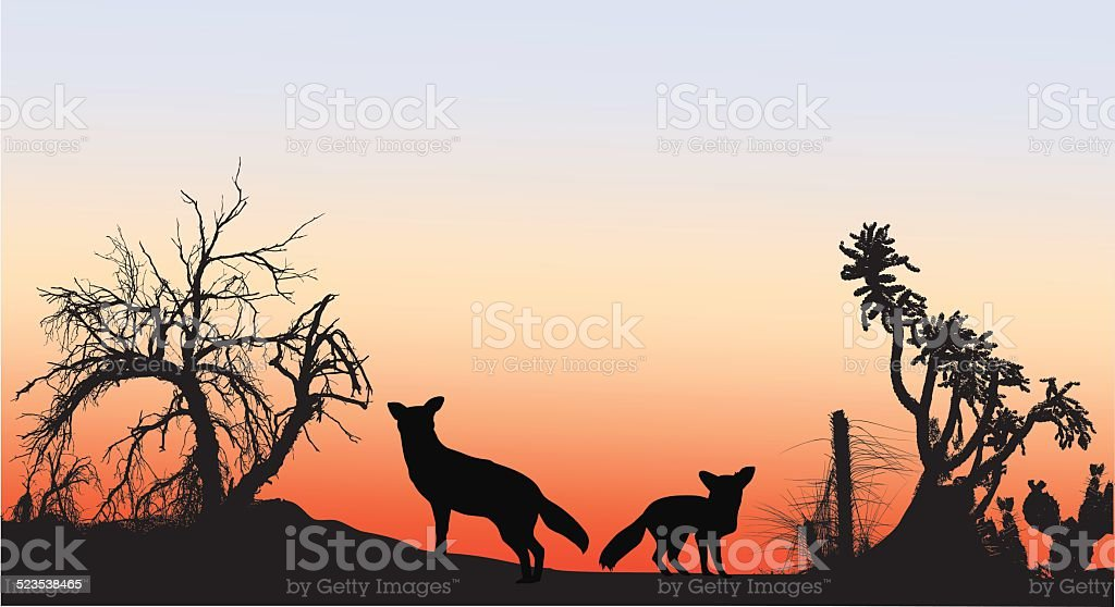 Coyotes vector art illustration