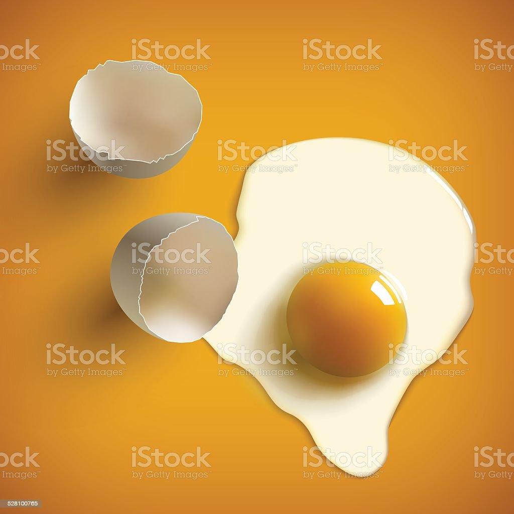 cracked raw egg vector art illustration