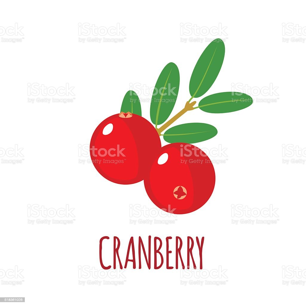 Cranberry icon in flat style on white background vector art illustration