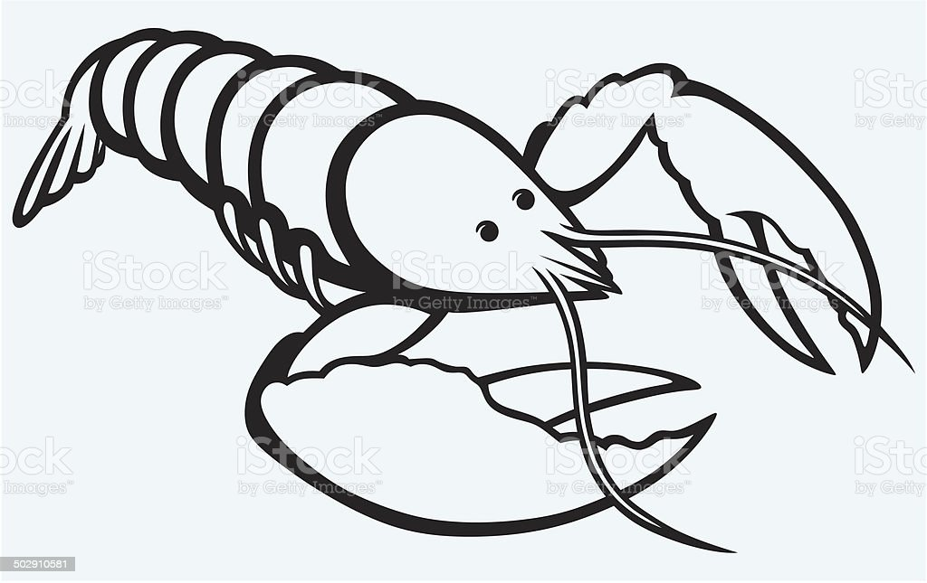 Crayfish sketch royalty-free stock vector art