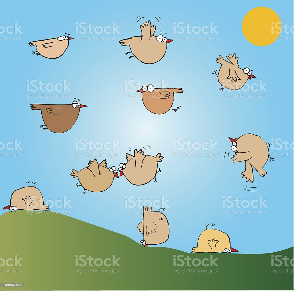 Crazy chicken try to fly royalty-free stock vector art