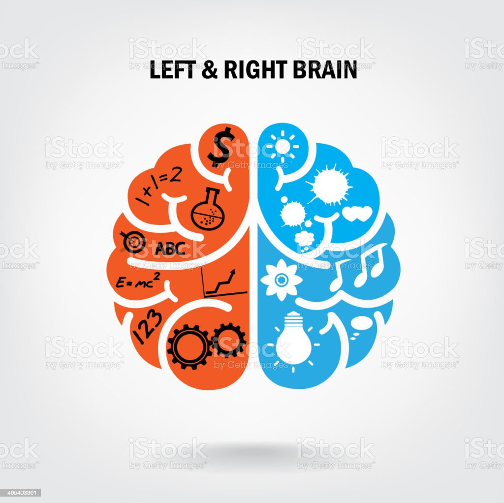 Creative left brain and right brain vector art illustration