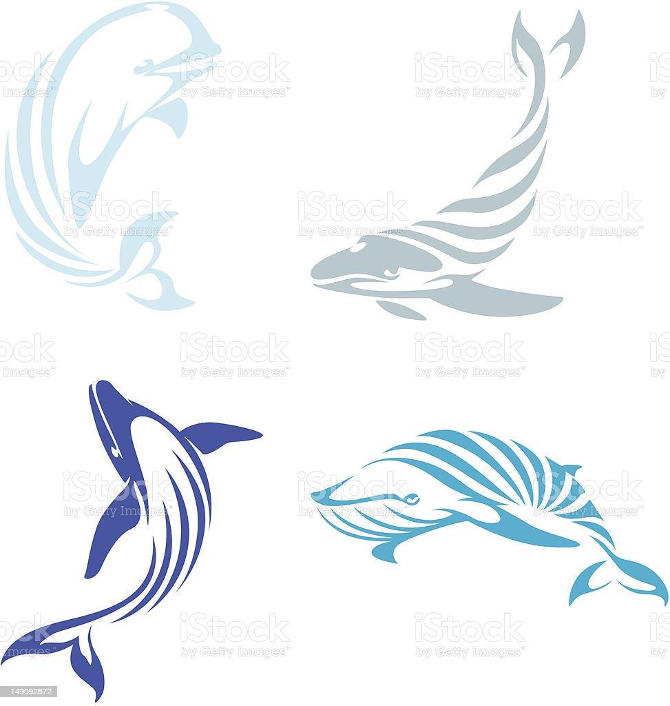Creative Whale Illustrations vector art illustration
