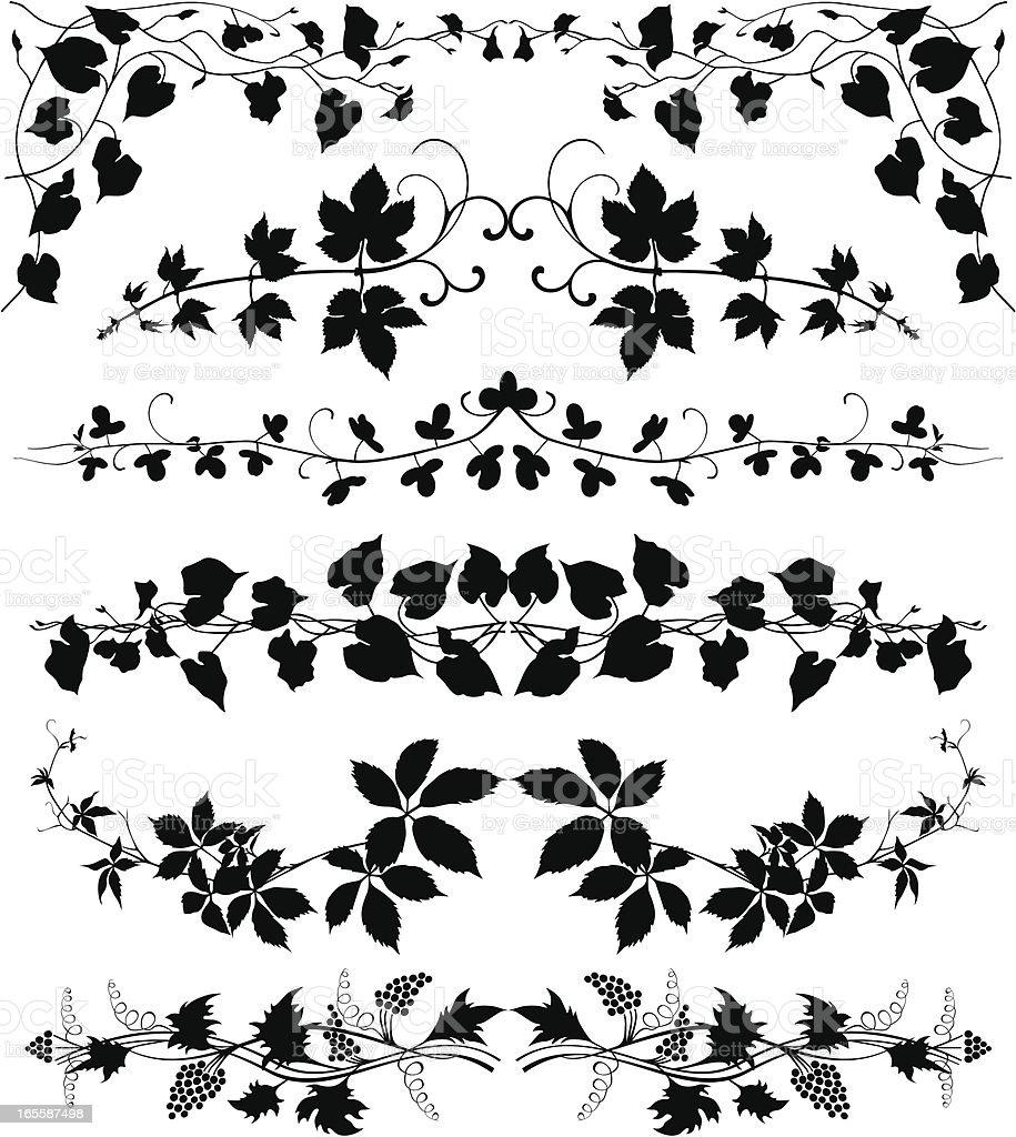Creeper plants set vector art illustration