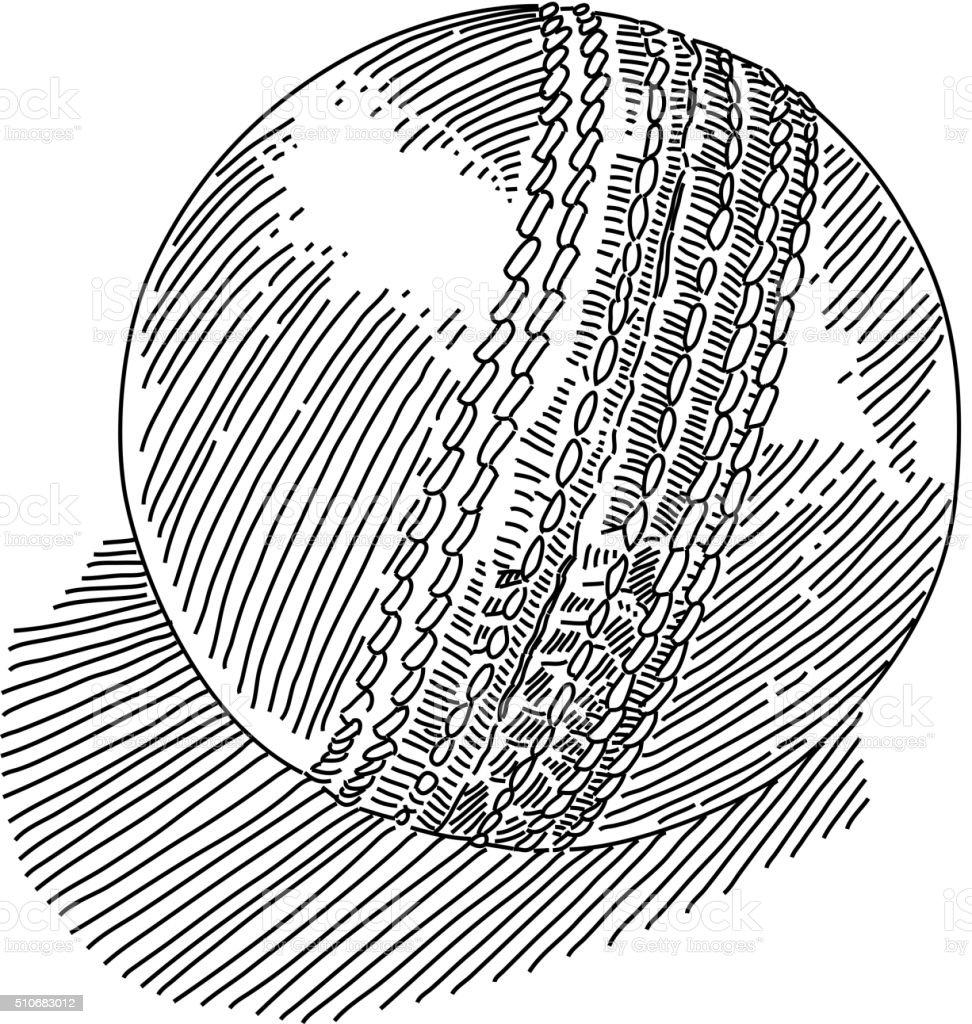 Cricket ball Drawing vector art illustration
