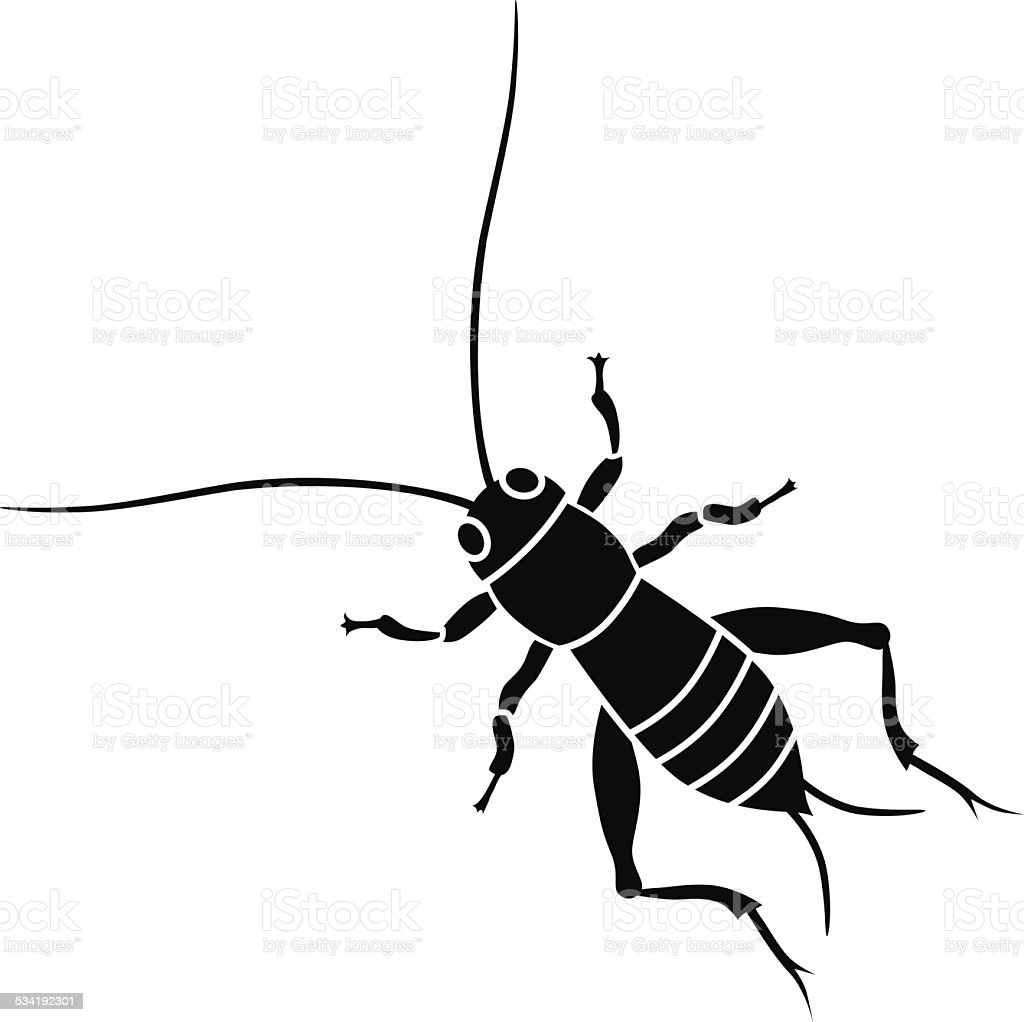 cricket insect in black and white vector art illustration
