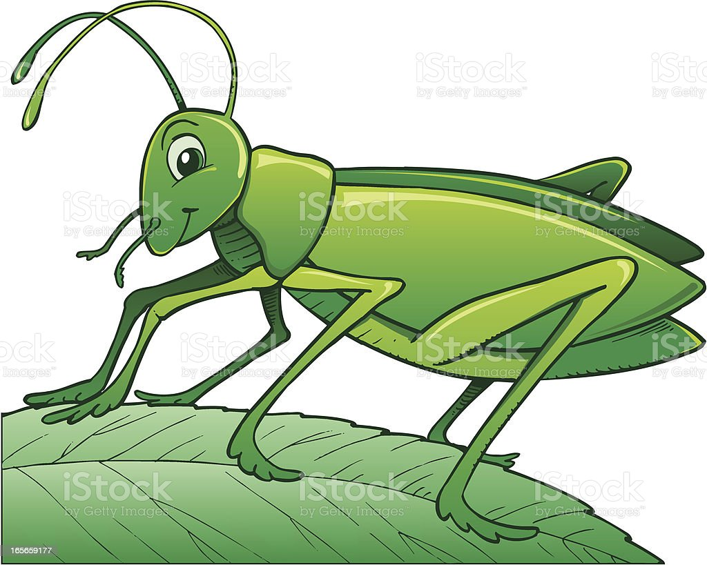 Cricket royalty-free stock vector art