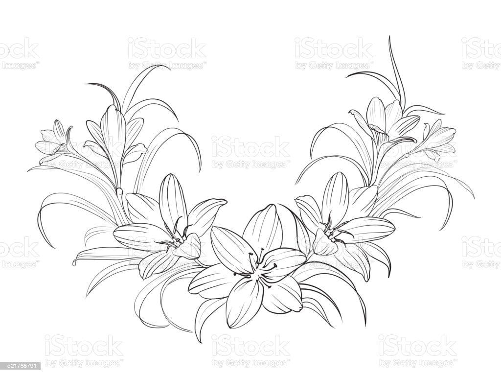 Crocus flowers. vector art illustration