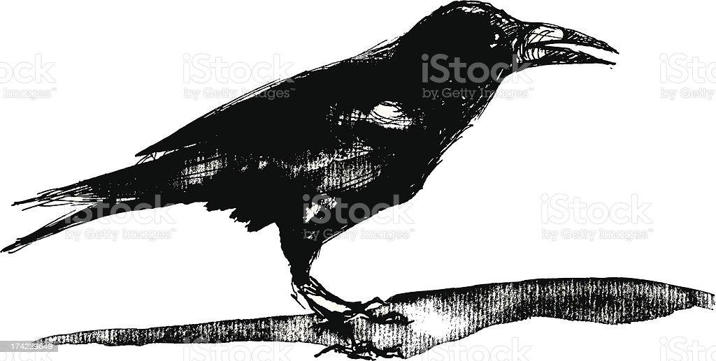 Crow royalty-free stock vector art