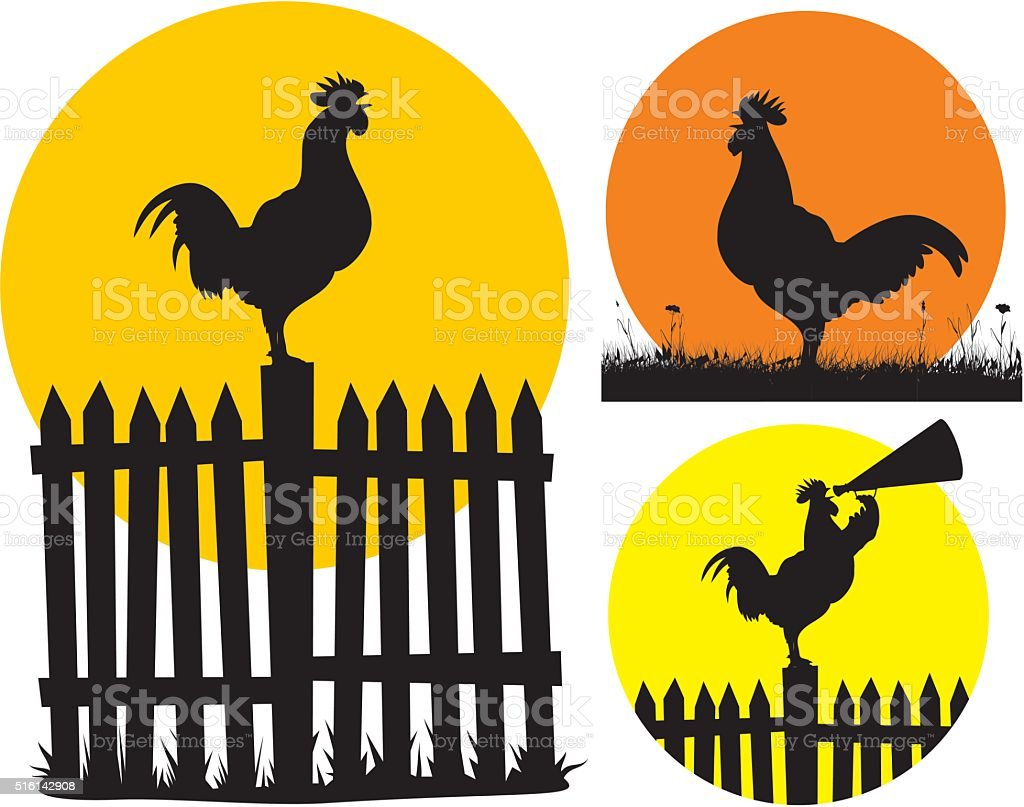 crowing cock and rising sun vector art illustration