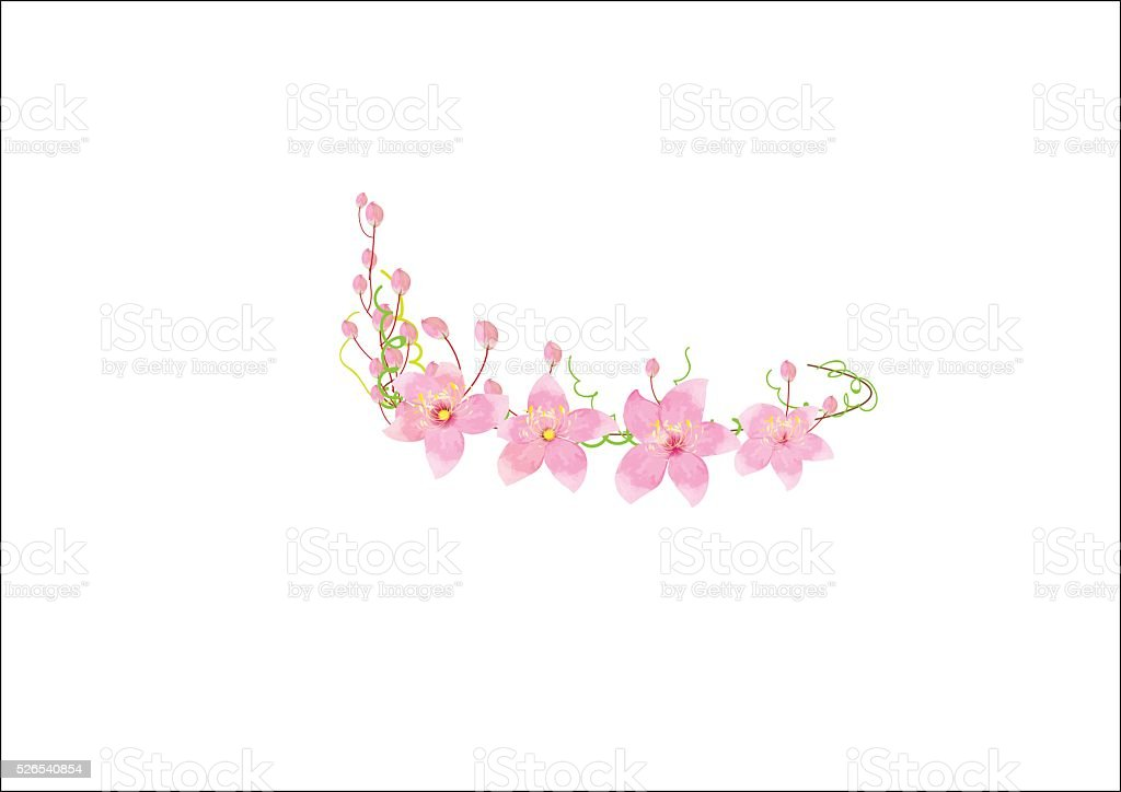 crown pink  flowers isolated on white background, vector art illustration