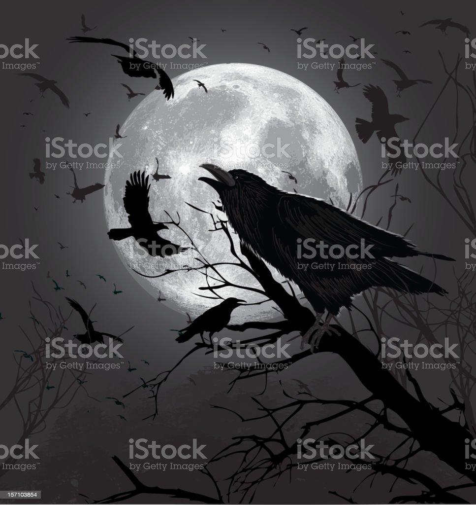 Crows vector art illustration