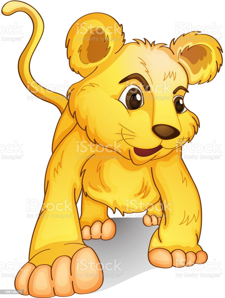 Cub on white royalty-free stock vector art