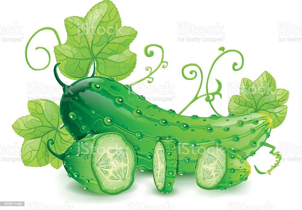 Cucumber royalty-free stock vector art