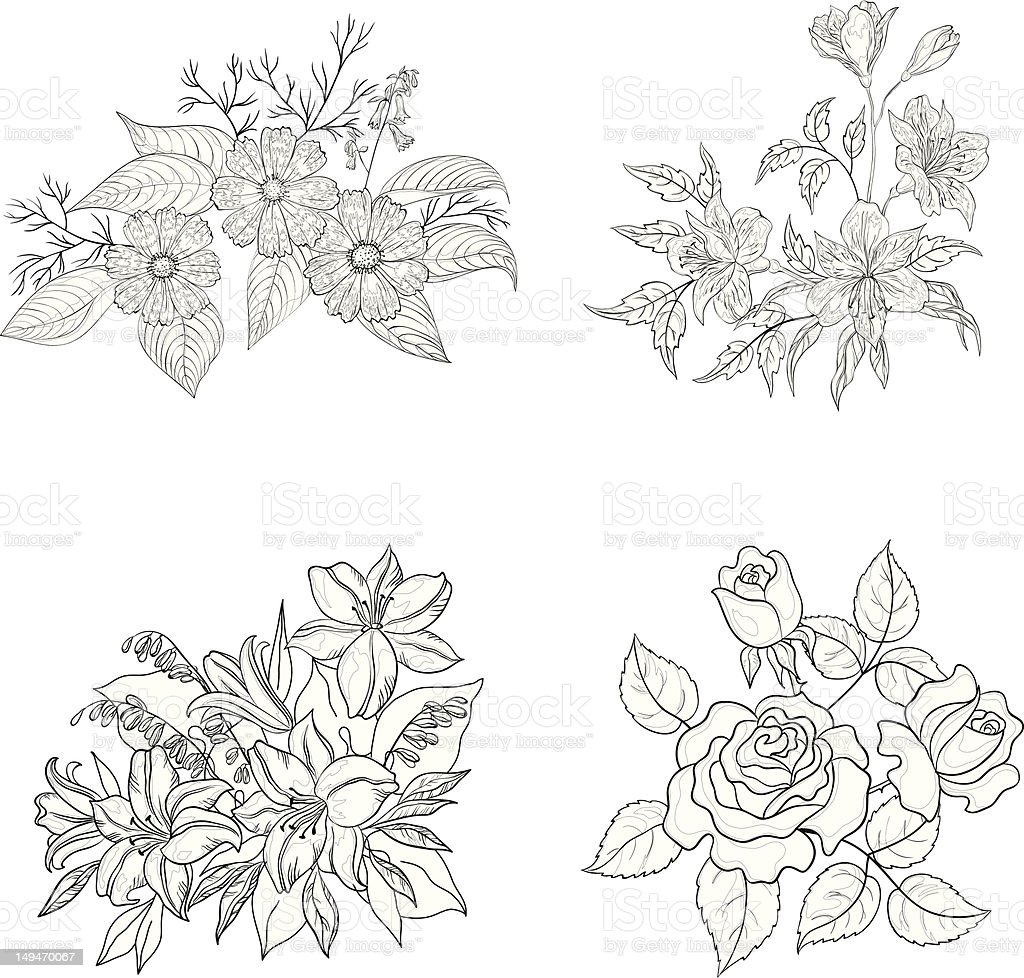 Cultivated flowers, outline, set royalty-free stock vector art
