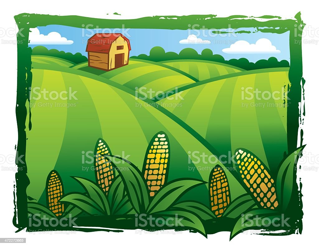 Cultivated Green Fields vector art illustration