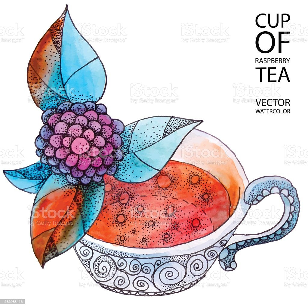 Cup of raspberry tea vector art illustration