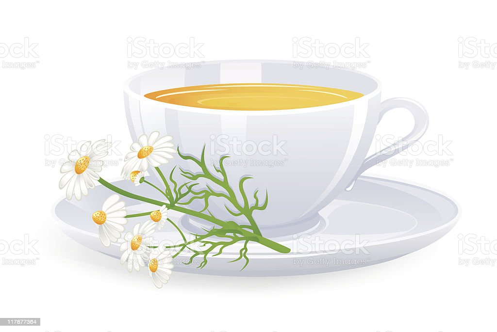Cup of tea with camomile flowers vector art illustration