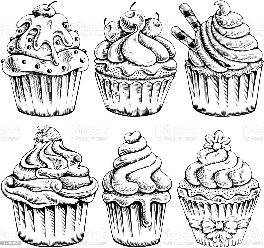 Cupcakes set vector art illustration