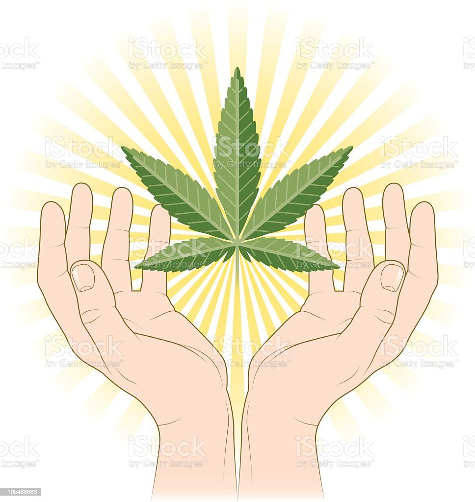 Cupped hands and cannabis royalty-free stock vector art