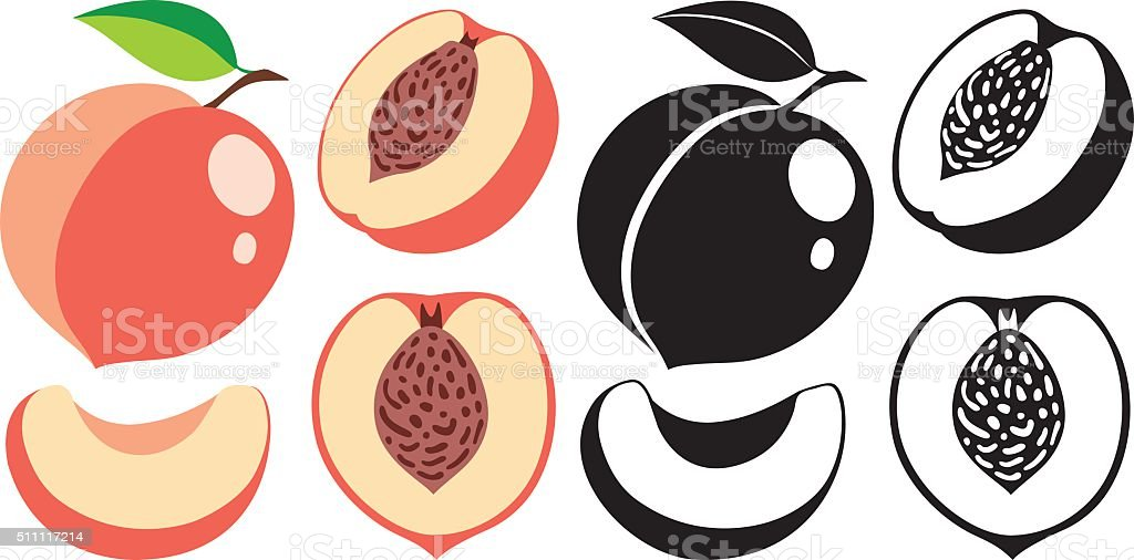 Cut and whole peaches in color and monochrome, vector illustrations vector art illustration