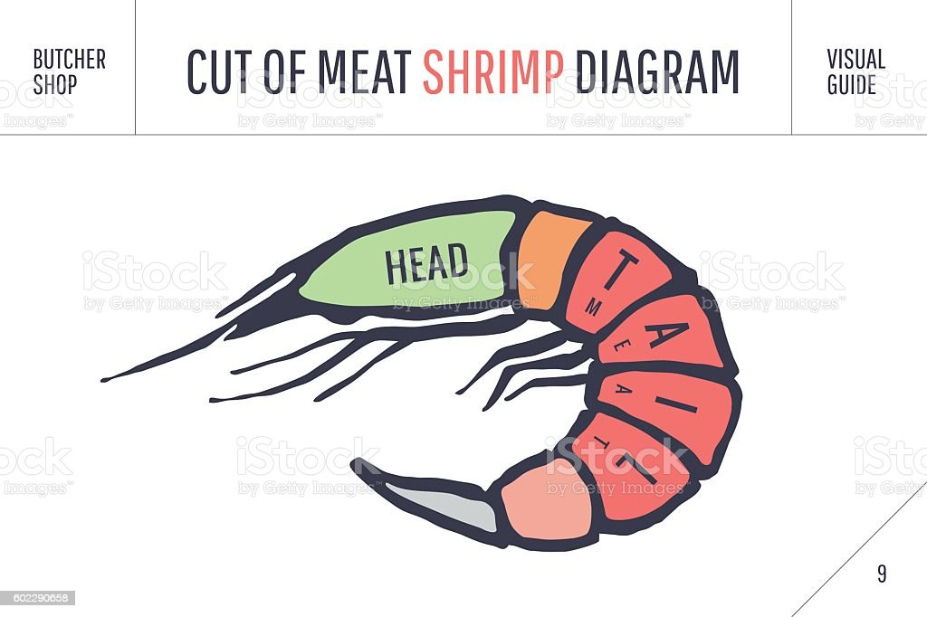 Cut of meat set. Poster Butcher diagram and scheme - vector art illustration