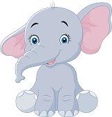 Cute baby elephant sitting isolated on white background