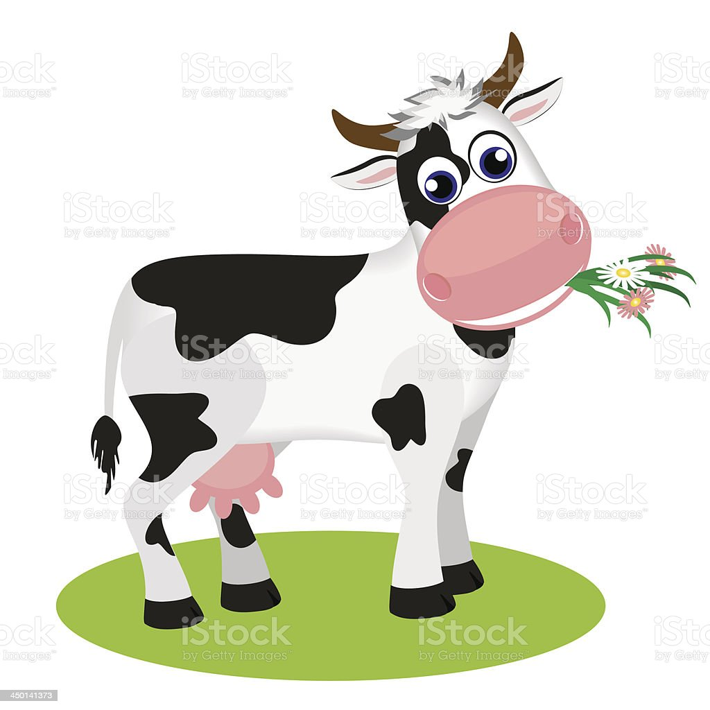 Cute black and white cow eating daisy royalty-free stock vector art