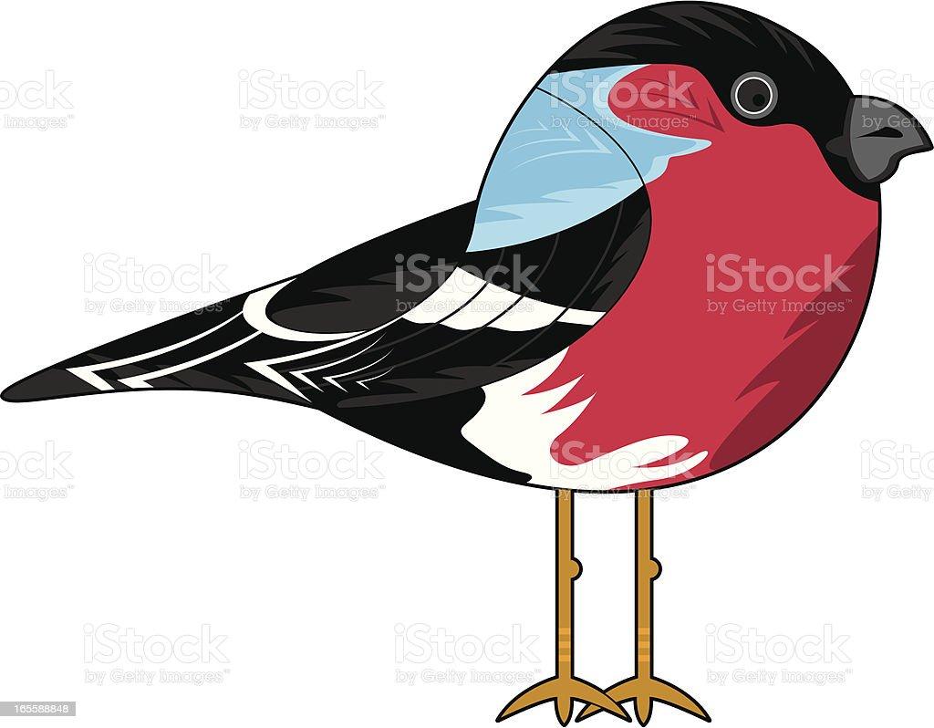 Cute Bull Finch royalty-free stock vector art