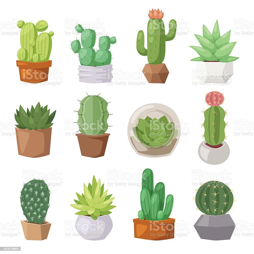 Cute cartoon cactus collection flat nature vector illustration vector art illustration