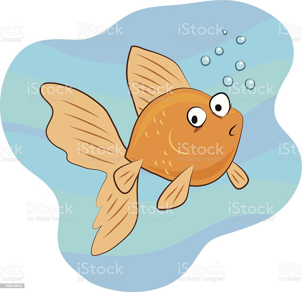 Cartoon goldfish illustration royalty free stock photo image - Cute Cartoon Goldfish With Big Fins Royalty Free Stock Vector Art