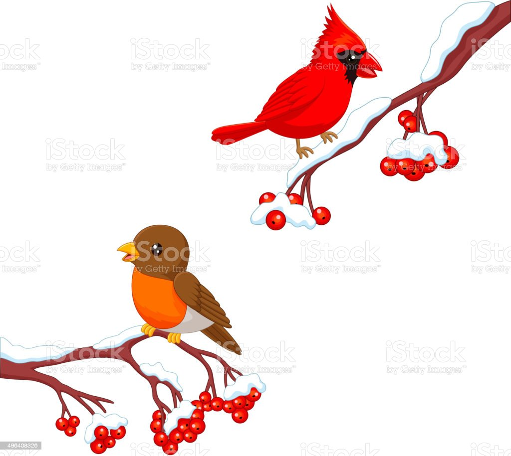 Cute cartoon robin bird and cardinal bird on the berry tree vector art illustration