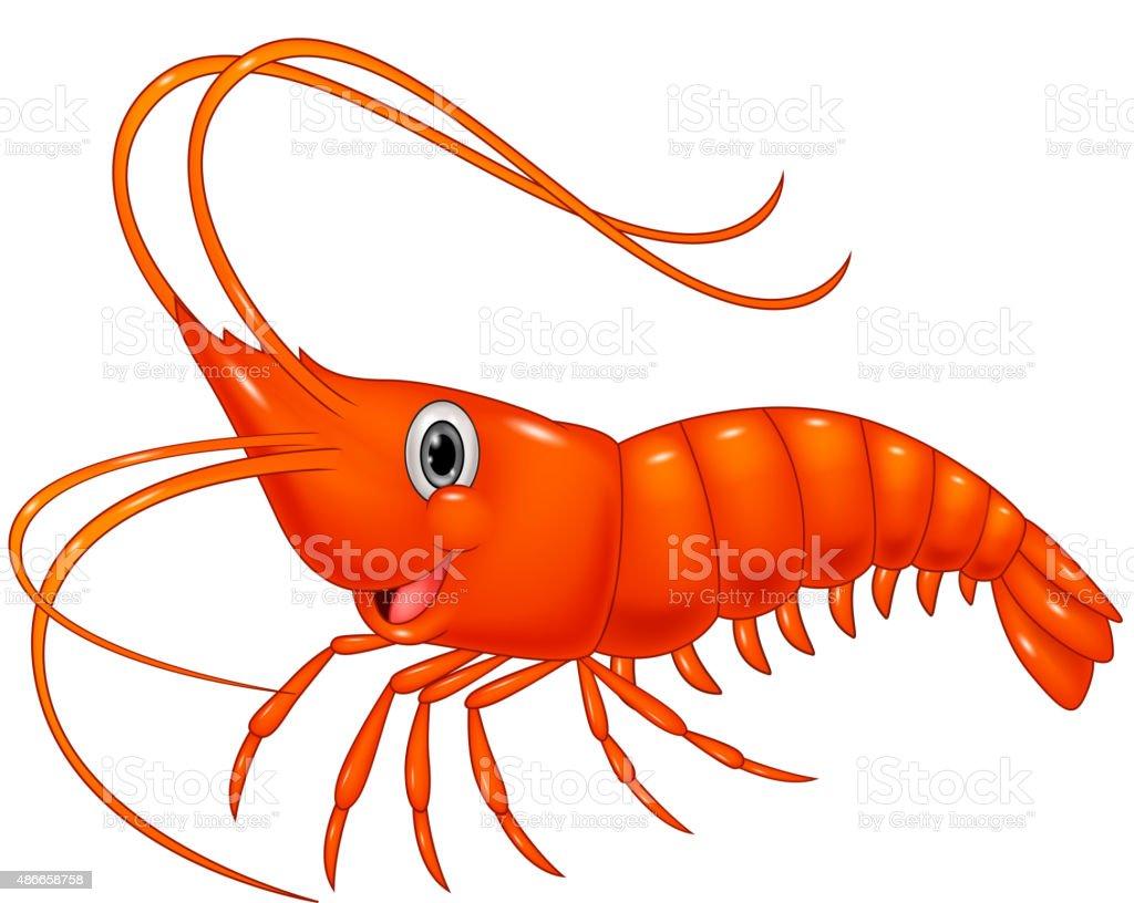 Cute cartoon shrimp vector art illustration