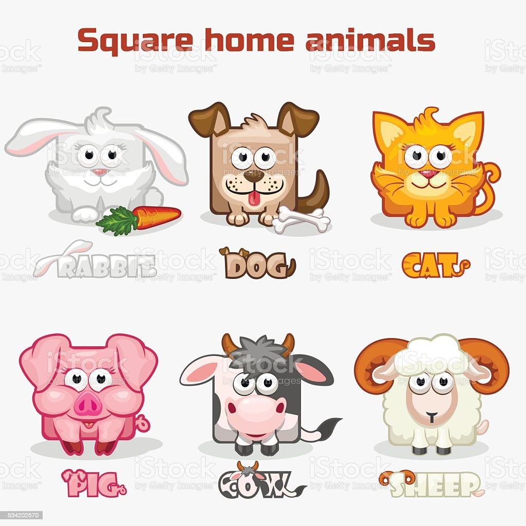 cute cartoon square Home animals vector art illustration