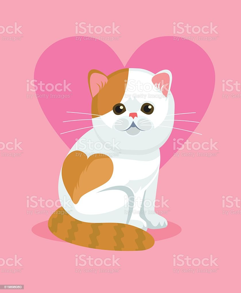 Cute cat with flat nose and heart on back vector art illustration