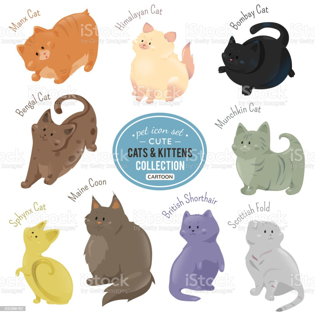 Cute cats and kittens depicting different fur color breeds vector art illustration