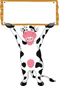 cute cow cartoon and blank sign