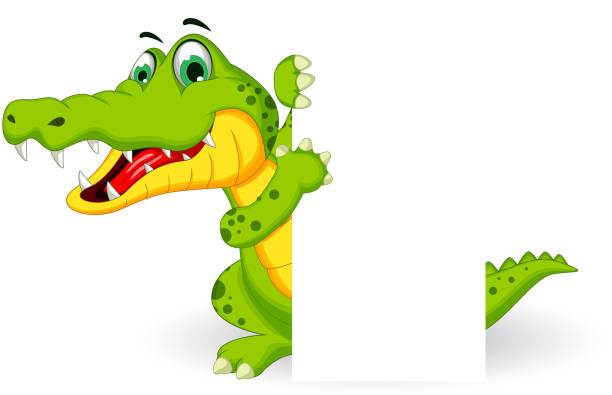 Alligator Clip Art, Vector Images & Illustrations - iStock
