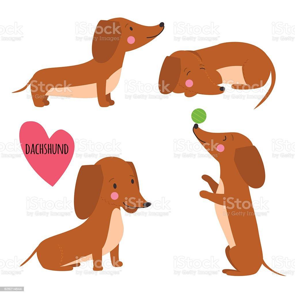 Cute dachshund set vector art illustration