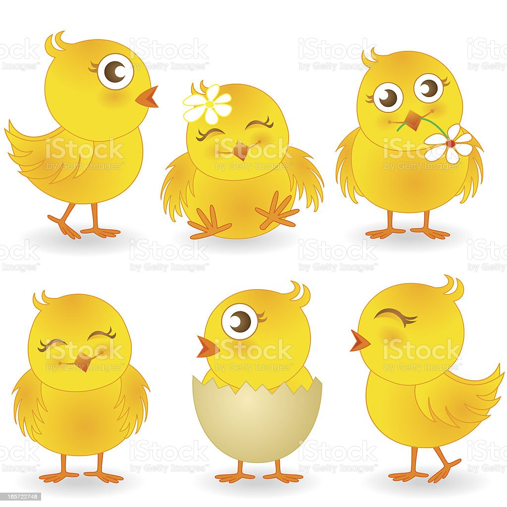 Cute Easter Chicks Vector Illustration Collection royalty-free stock vector art