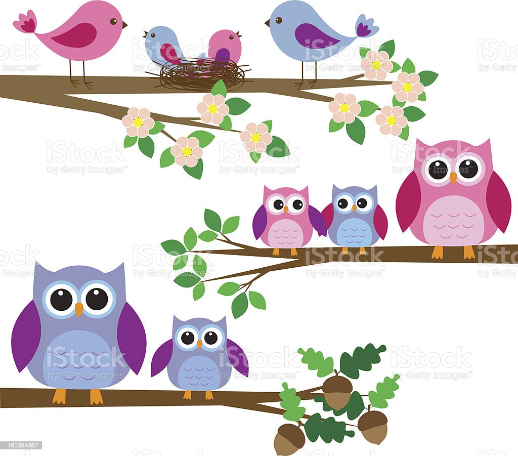 Cute families of owls and birds royalty-free stock vector art