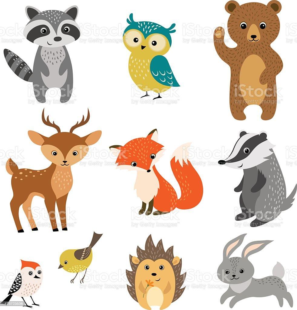 Cute forest animals vector art illustration
