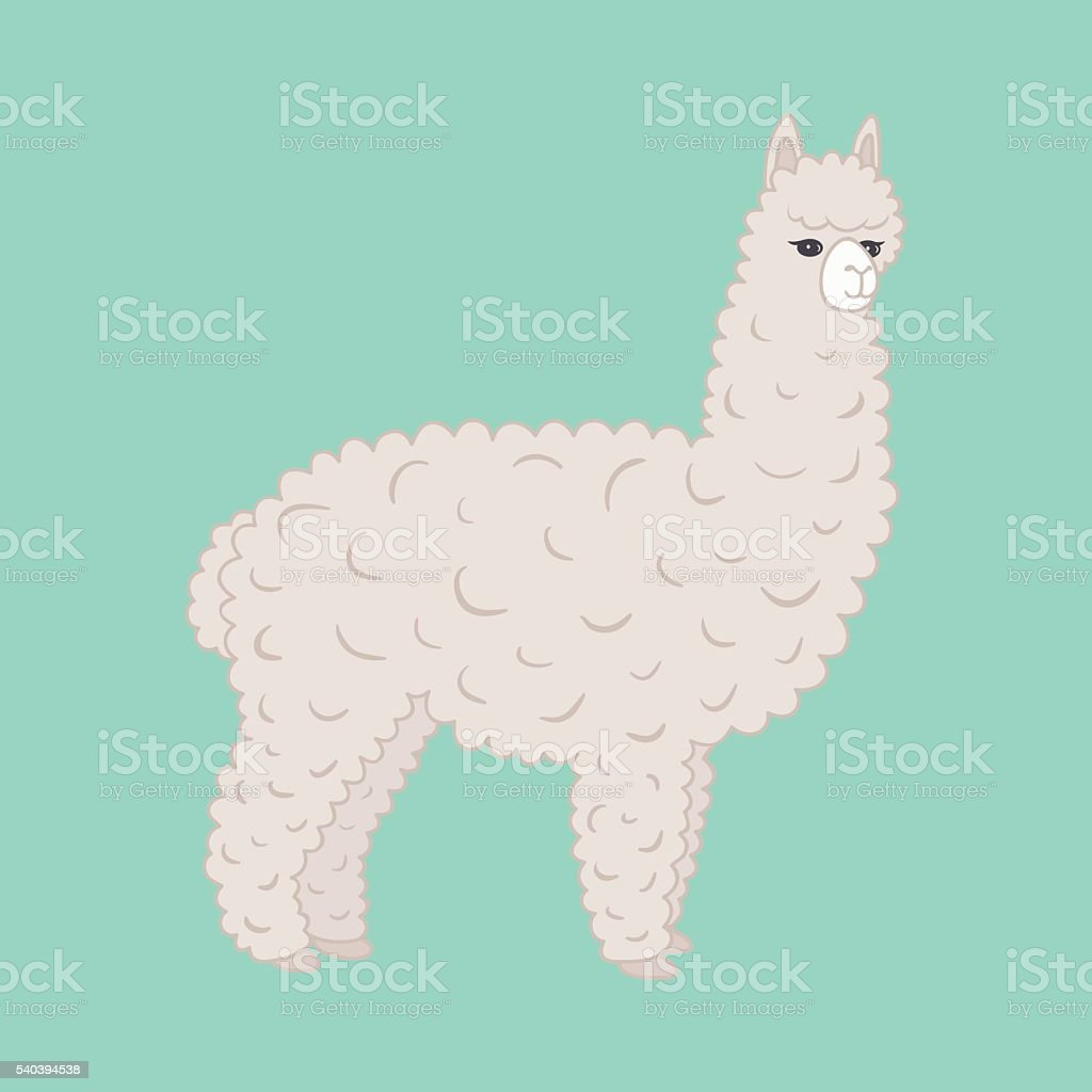 Cute furry alpaca. Vector illustration. vector art illustration