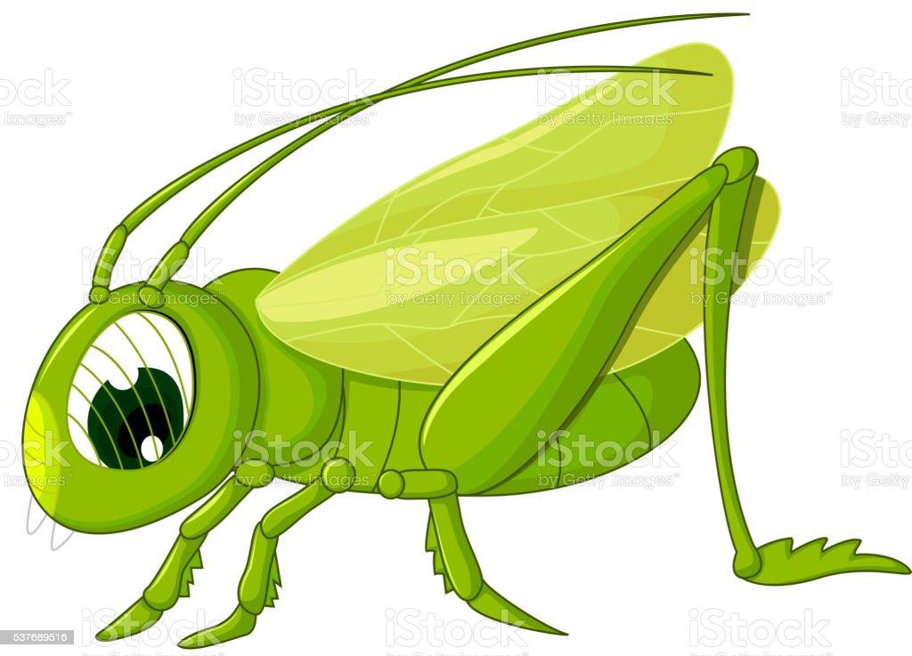 cute grasshopper cartoon vector art illustration