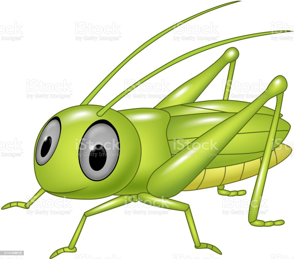 Cute grasshopper posing isolated on white background vector art illustration