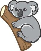 cute koala on a tree