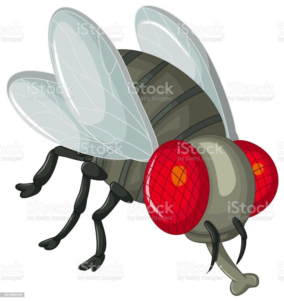 Cute little cartoon flies vector art illustration